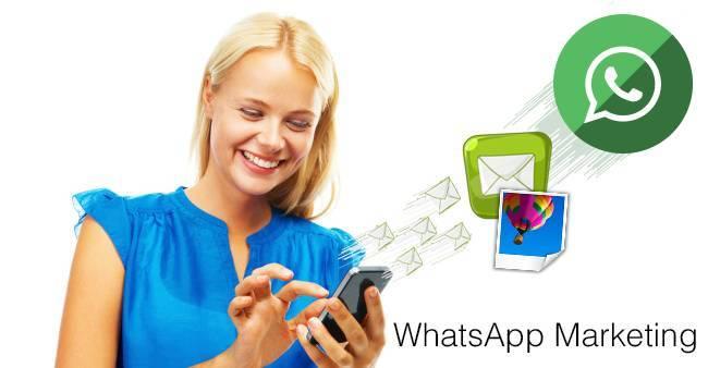 Campaña de Whatsapp marketing