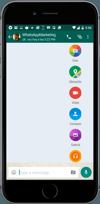 bulk messages whatsapp