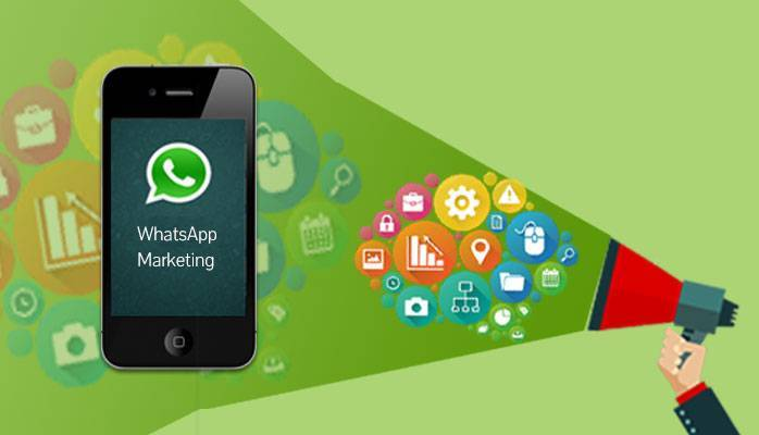 Cómo realizar una campaña efectiva en WhatsApp Marketing