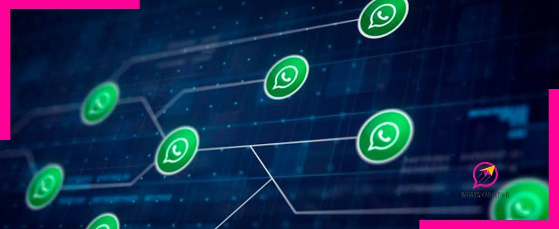 Plataforma aprendizaje whatsapp marketing