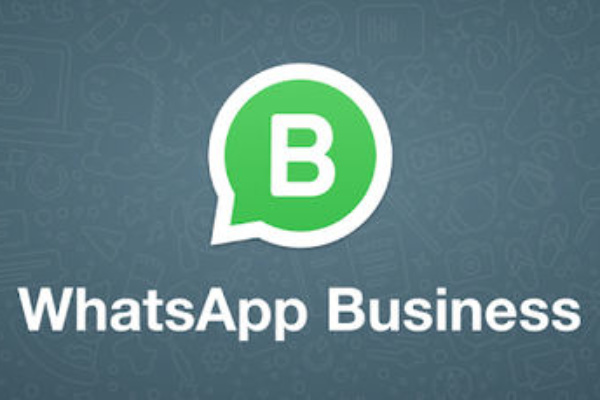 API de Whatsapp Business